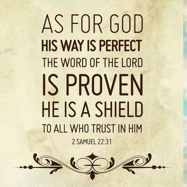 2 Samuel 22:31 (NKJV) - As for God, His way is perfect;The word of the LORD is proven;He is a shield to all who trust in Him.
