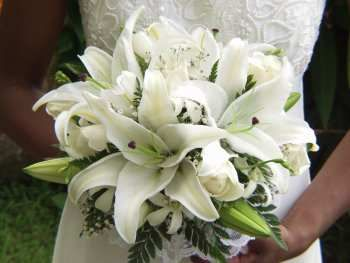 Google Image Result for http://www.lovehawaii.com/images/flowers%2520copy.jpg