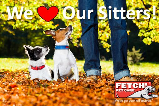 It's Pet Sitter Appreciation Week, and we want to take a moment to recognize all the awesome dog walkers and pet sitters out there who provide loving care to pets every day! And, yes, maybe we're a little biased toward our amazing Fetch! Pet Care providers! Thanks for all you do for the pets! #PetSitterAppreciationWeek