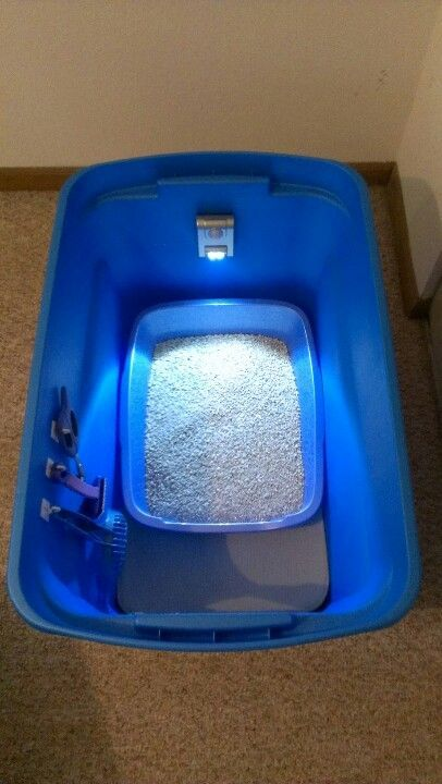 25 Best Ideas About Cat Litter Mat On Pinterest Fun Sites Hidden Litter Boxes And Cat Box
