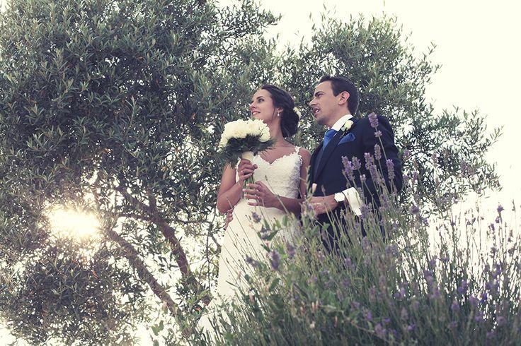 fotografo tarragona: Fotografo Tarragona, Fotógrafo Profes, Wedding, Tarragona Para, Fotográfico Ubicado, En Tarragona, Celebration, Photo Studio, Any Kind