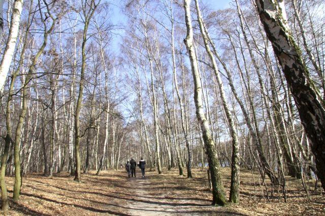 Pusty Staw na Stogach | #gdansk #walkingtours