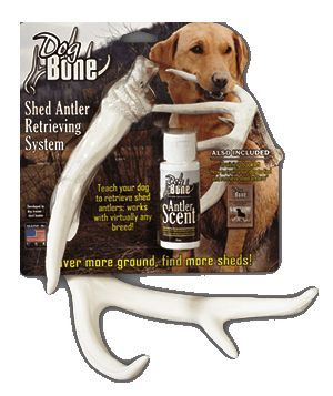 Shed Hunting Antler Retriever Training Kit Includes Three