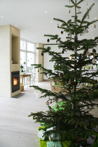 Christmas Modern 156 best modern christmas design images on pinterest | modern