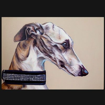 Whippet oil on canvas