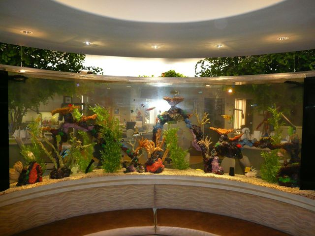 Attractive Top Class Aquariums By Acrylic Aquariums U2013 Adorable Home