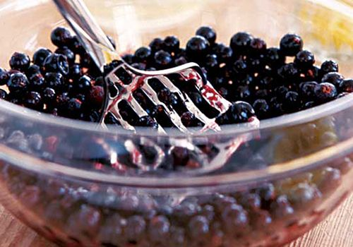 We love delicious juicy blackcurrants, and we have plenty of recipe ideas for making the most of them, from jam to savoury sauce...