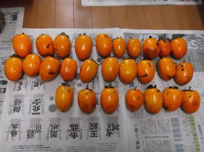 Hiroyuki's Blog on Japanese Cooking: Okashi (sweets)