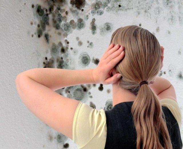 Вы увидели черные пятна в своей ванной и почуяли неприятный запах? Причина этого – появившаяся плесень. От черной плесени необходимо срочно избавиться, поскольку она может негативно повлиять на ваше с…