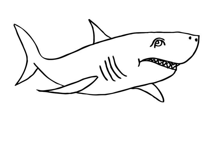 Ausmalbilder zum Drucken Malvorlage Haifisch kostenlos 1