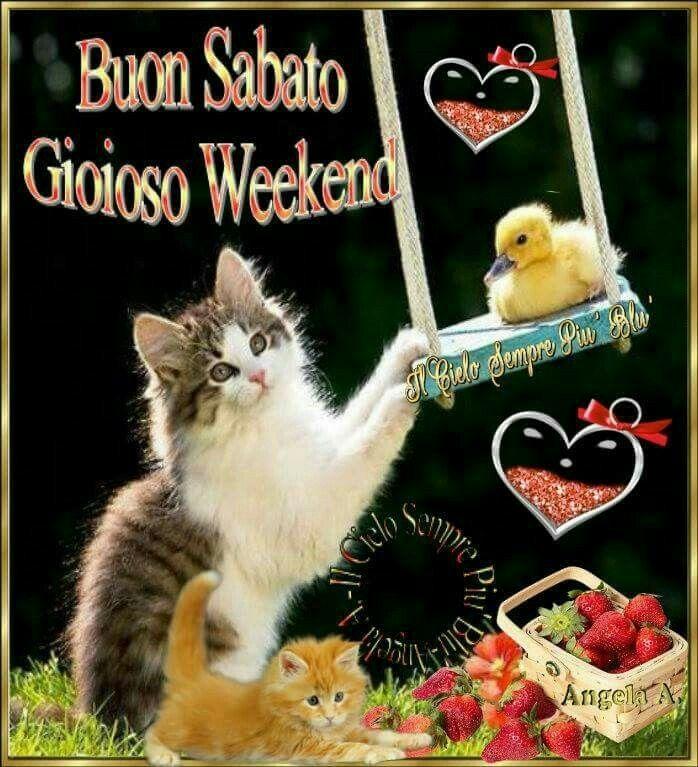 buongiorno buon sabato gioioso weekend