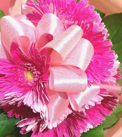 女性が好きなお花ランキング、いつも上位のガーベラだけの花束に、リボンをあしらったとても可愛らしいお花束! 360度ぐるりとお花が入っています。 元気とリラックス、両方かなえてくれる生のお花は、 ホワイトデーのお返しにぴったり!