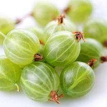 Kruisbessen. Uva spina noemen ze haar in Italië. Gooseberry in het engels. En kruisbes in ons land.
