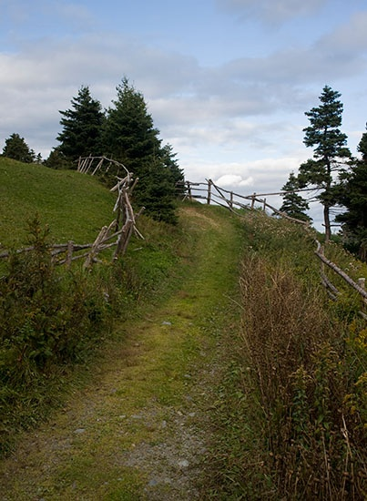 A section of the trail heading north from Torbay. http://www.dreamcatcherimaging.com/blog/tag/east-coast-trail/