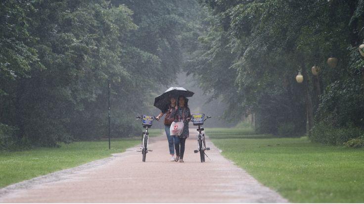 Wettervorhersage für Deutschland: Regen und kälter - der Herbst ist da! - News Inland - Bild.de