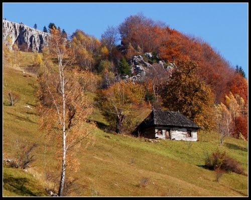 Autumn pastel over ancestral home - Magura #Romania #Autumn
