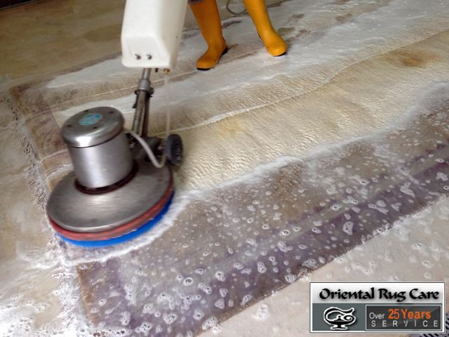 Call for Experienced Pet Stain Removal Service in Homestead