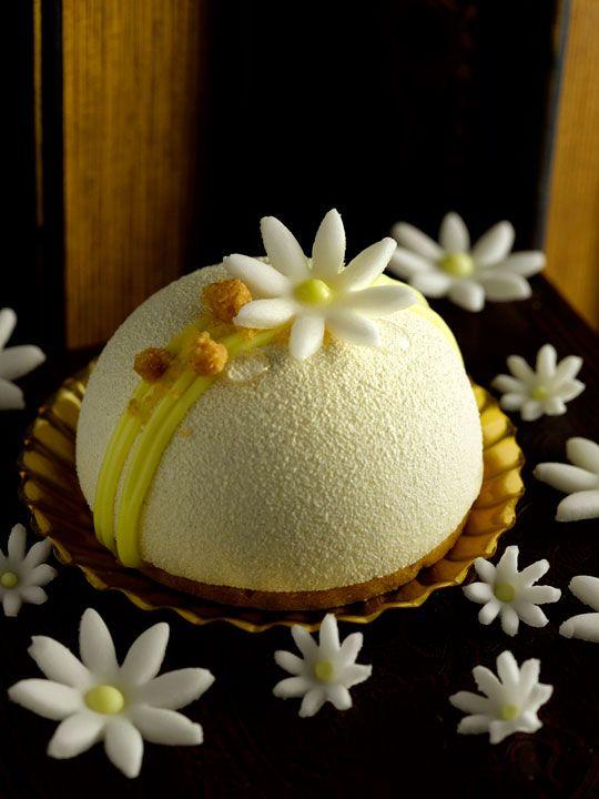 Antoinette - Chloe - Yuzu cremeux, white chocolate vanilla mousse, light sponge cake, almond sablé