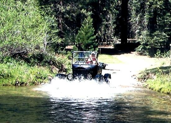 17 best images about close to yosemite things to do on for Yosemite fish camp