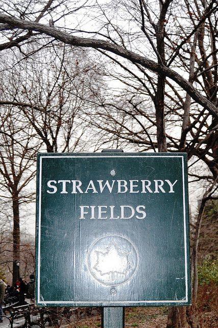 Strawberry Fields, Central Park., NEW YORK CITY,  (by agennari, via Flickr)