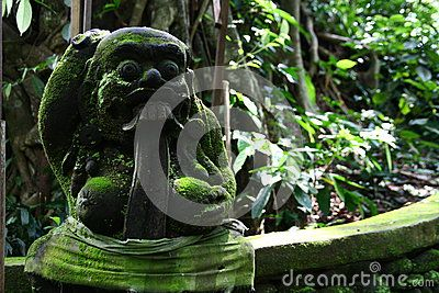 In the Monkey Forest of Bali Indonesia