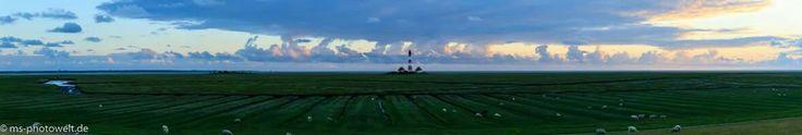 #leuchtturmwesterhever #eiderstedt #westerhever #panorama #salzwiese   #watt #leuchtturm #msphotoweltde