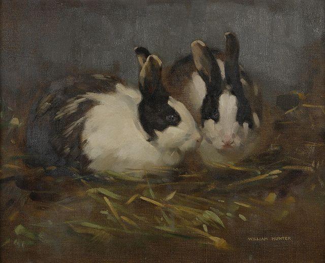 86 best rabbit oil images on Pinterest