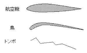 図1 翼の断面形
