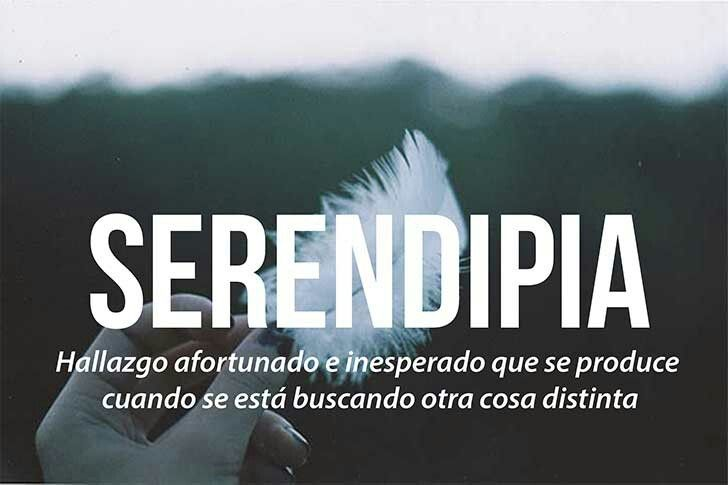 Serendipia #palabras #buscar