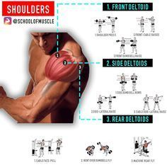 """5,515 Likes, 42 Comments - School Of Muscle (@schoolofmuscle) on Instagram: """"✅ Want Full 3D Shoulders? Hit 'Save' & Try These Out Next Time . . . ✅Now that you've got an…"""""""