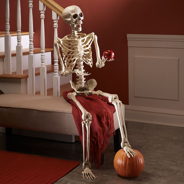 This bony posable skeleton will strike a pose wherever you want him to, thanks to his flexible joints. Invite him to take a seat at your dining room table, or to greet guests in your entryway. He's sure to make quite a first impression.