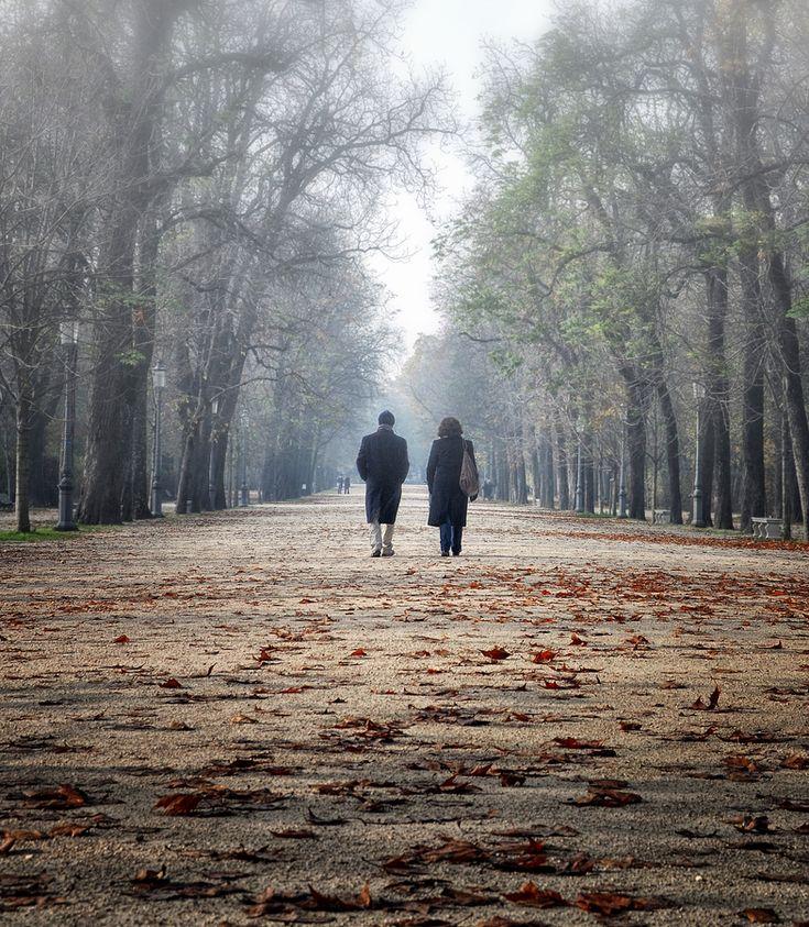 Les feuilles mortes by Silena Lambertini Parco Ducale di Parma - Italy