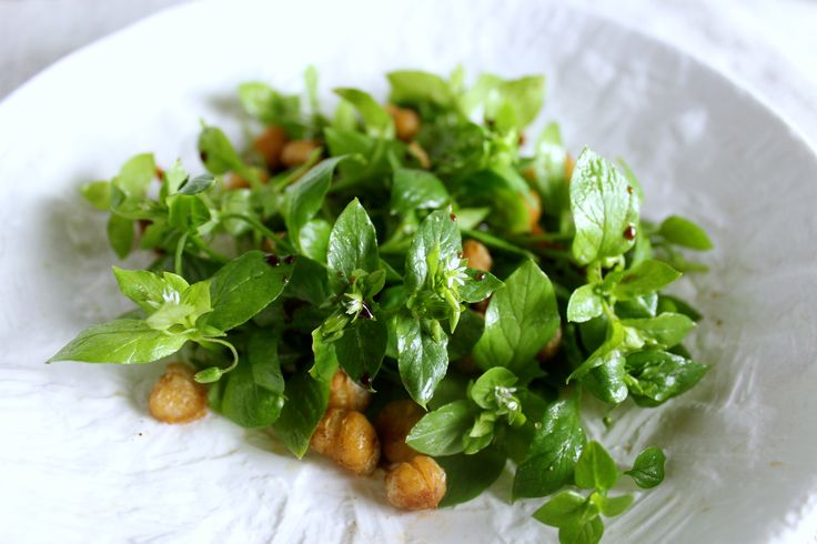 Chickweed and chickpea salad