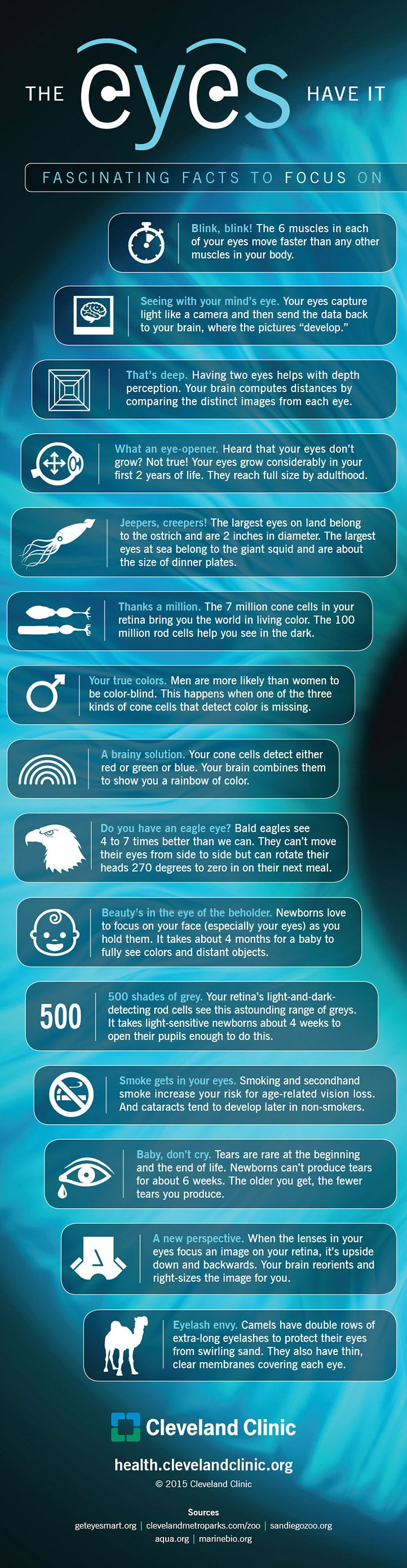 Best Images About Optical On Pinterest The Internet - 15 amazing facts about the internet