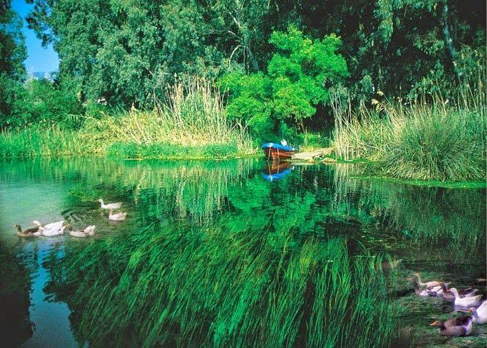 Akyaka sessizliği ve sakinliği, sırtını yasladığı yemyeşil ormanlarla kaplı dağları, akvaryum niteliğinde azmakları, bu azmaklardaki benzersiz su altı florası, duru mavi denizi, Orman Kampı, bol suyu, tarihi dokusu, kendine has mimari özellikteki ahşap evleri, doğal yaşamın bir parçası olan su samurları, yılan balıkları, Akdeniz fokları, flamingoları ve leylekleri ile tercih edilen bir yaşam cenneti.