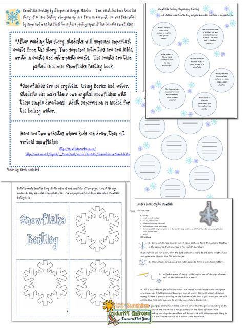 Snowflake Bentley Book Activity