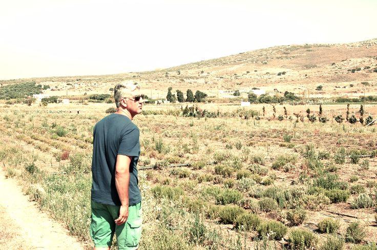#Naxos #cooperations