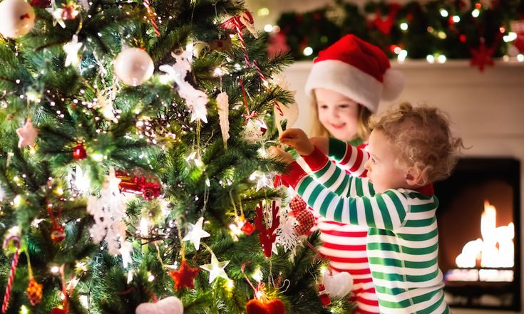 #Where to Buy a #Real #Christmas #Tree – #Gold #Coast to #Byron #Bay