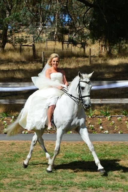 samsariequestrian:    sarah-williams123:    Megan Jones at her wedding!! stunning!!