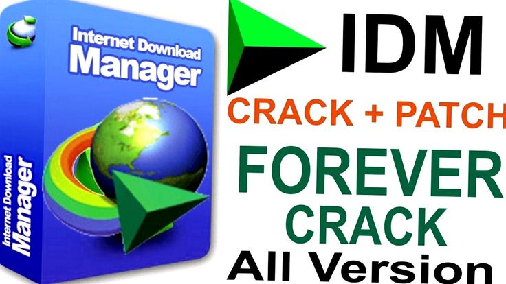 Internet Download Manager 6 29 Build 2 Final for free