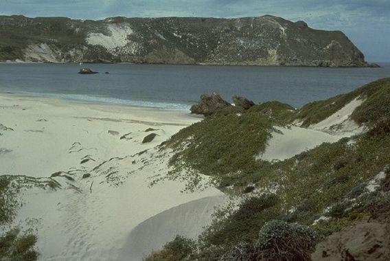 Channel Islands 11.jpg