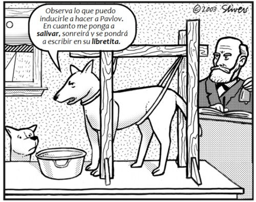 #humor #`psicologia: Laughing, Pavlov Dogs, Classic Conditioning, Funny Stuff, Funnies, Psychologyhumor, Things, Smile, Psychology Humor