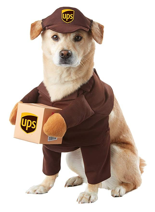 California Costume Collections Pet20151 Ups Pal Dog Costume