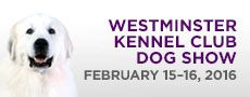 WKC Dog Show - Find All Results & Past Winners of Best in Show - WestminsterKennelClub.org