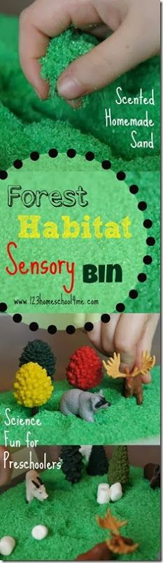 Letter Ff: Forest Habitat Sensory Bin with Scented Homemade Sand (from 123 Homeschool 4 Me)