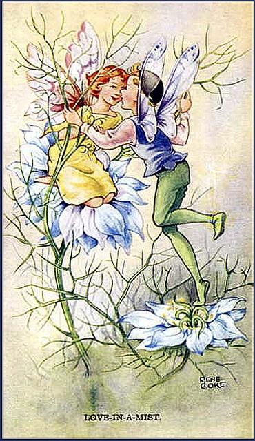"""Résultat de recherche d'images pour """"flower fairies in love"""""""