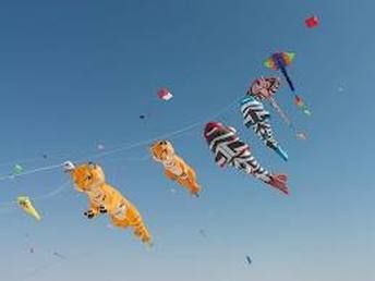 """AKF - Ahmedabad Kite Flyers - Ahmedabad, Gujarat, India provides kite making, kite designing, kite competition and kite awareness and knowledge programmes.""  more detail plz visit - http://www.vibrantkiteclub.com/upcoming-events.html or call us for organize kite festival  - 9898194208 , vibrantkiteclub@gmail.com"
