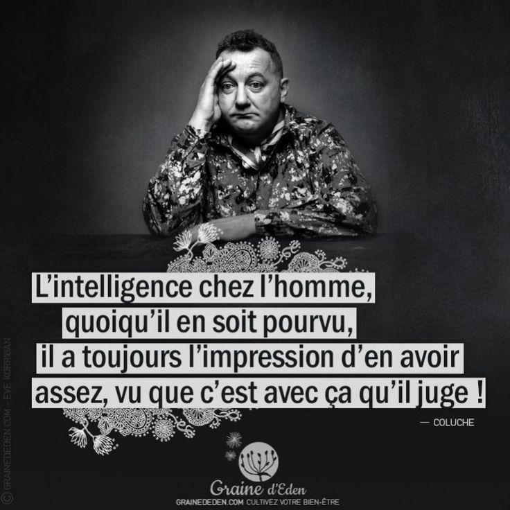 L'intelligence chez l'homme, quoiqu'il en soit pourvu… #penseesPositives #quote #bienetre #citation #coluche