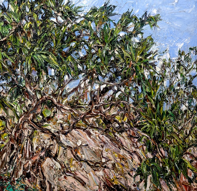 © Nicholas Harding ~ Yuraygir pandanus with swamp oak and pigface ~ 2013 oil on Belgian linen at Tim Olsen Gallery Sydney Australia