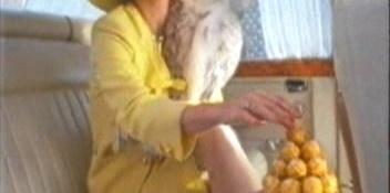 Ferrero Rocher...30 anni in giallo! | News Fuelmarketing